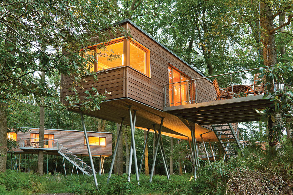 Resort Baumgeflüster | Ein Zauberwald im Nirgendwo | Discover Germany