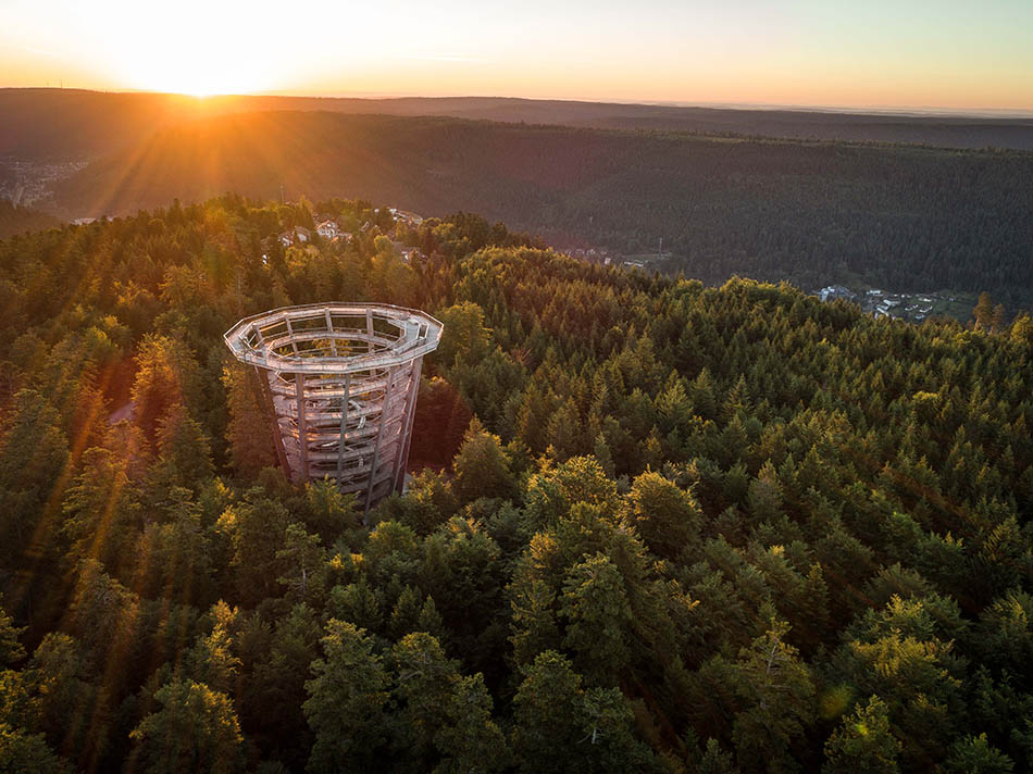 History, hydrotherapy and adventure in the Black Forest | Discover Germany